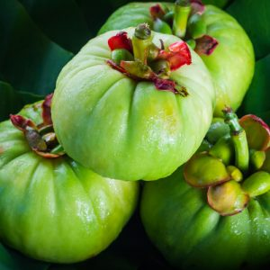 Garcinia Cambogia as a fat burner