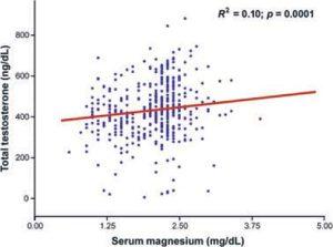 Magnesium testosterone relationship graph