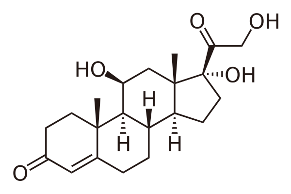 Cortisol structure