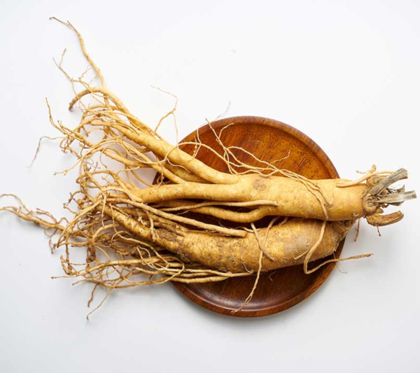Ginseng dose is low
