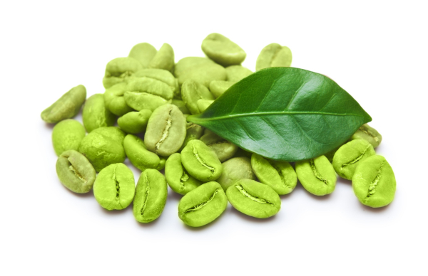 Green coffee bean dose too low